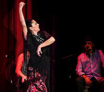 Café Flamenco: Eclectico